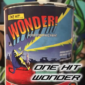 ONE HIT WONDER Paint